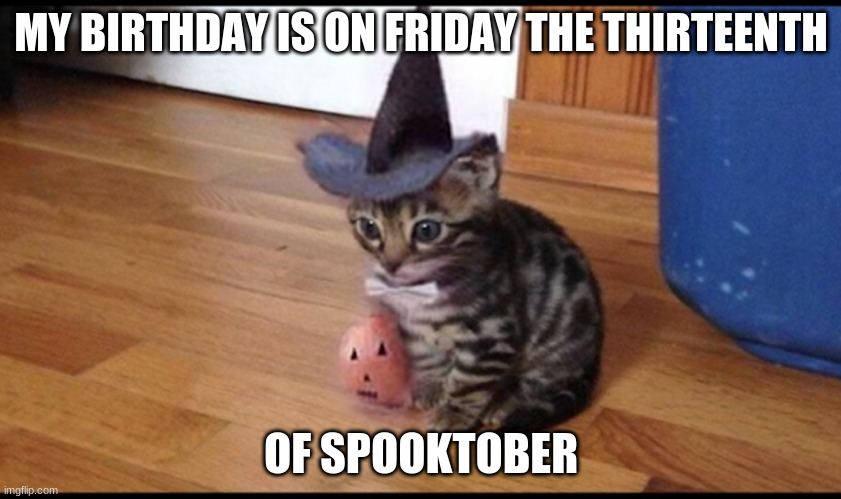 I'm cursed |  MY BIRTHDAY IS ON FRIDAY THE THIRTEENTH; OF SPOOKTOBER | image tagged in halloween cat | made w/ Imgflip meme maker