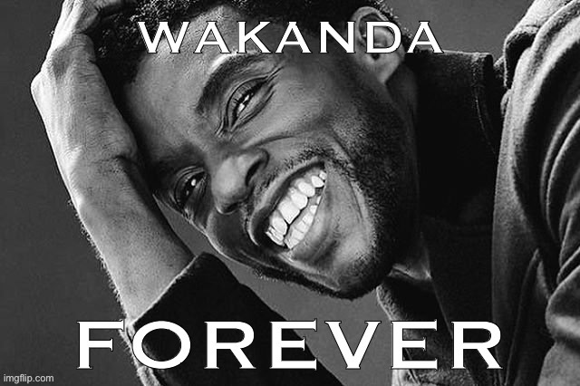 R.I.P. Chadwick Boseman. Gifted actor, beautiful soul. | image tagged in wakanda forever r i p chadwick boseman,actor,r i p,rest in peace,wakanda forever,avengers | made w/ Imgflip meme maker
