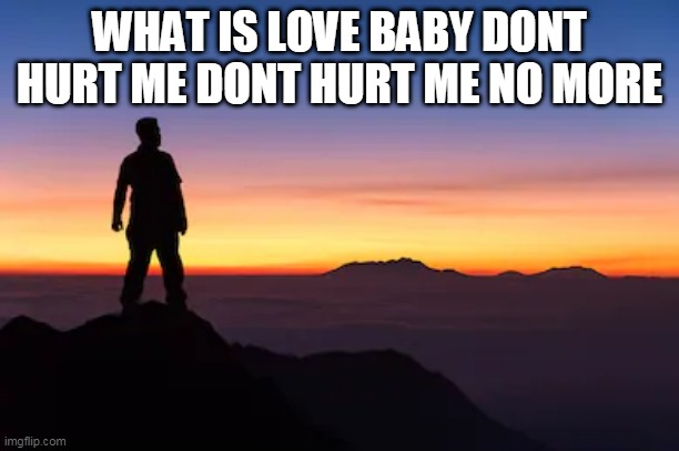 WHAT IS LOVE |  WHAT IS LOVE BABY DONT HURT ME DONT HURT ME NO MORE | image tagged in what is love,baby dont hurt me,dont hurt me,no more,what is love baby dont hurt me dont hurt me no more | made w/ Imgflip meme maker