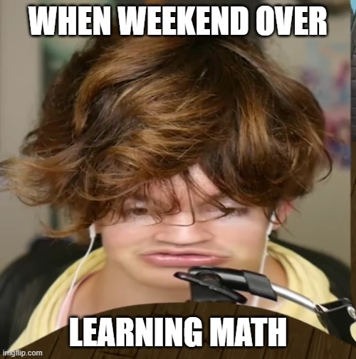The dumb people before school the next day |  WHEN WEEKEND OVER; LEARNING MATH | image tagged in flamingo learns the science | made w/ Imgflip meme maker