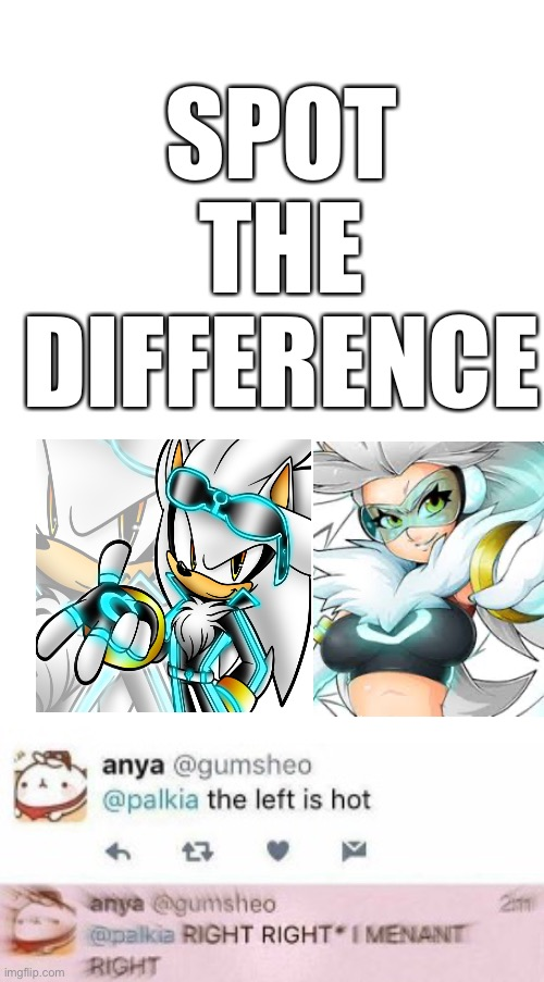 RIGHT, I MEANT RIGHT! |  SPOT THE DIFFERENCE | image tagged in right i meant right,silver the hedgehog,anakiam,anime,so so dank | made w/ Imgflip meme maker