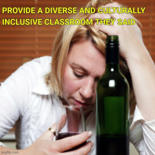 Inclusive Classroom | image tagged in teaching | made w/ Imgflip meme maker