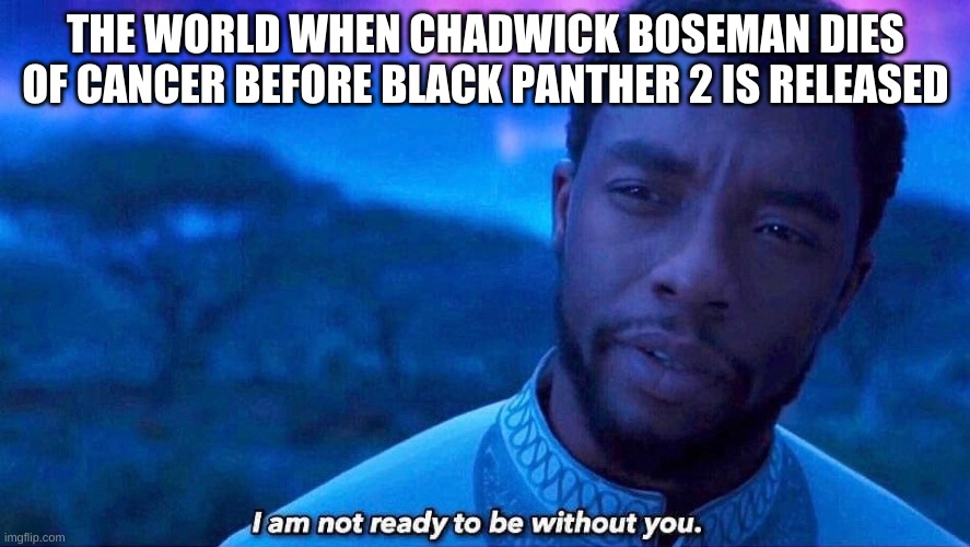 Rest In Power Chadwick Boseman, may this meme hold a candle to your legacy |  THE WORLD WHEN CHADWICK BOSEMAN DIES OF CANCER BEFORE BLACK PANTHER 2 IS RELEASED | image tagged in i'm not ready to be without you | made w/ Imgflip meme maker