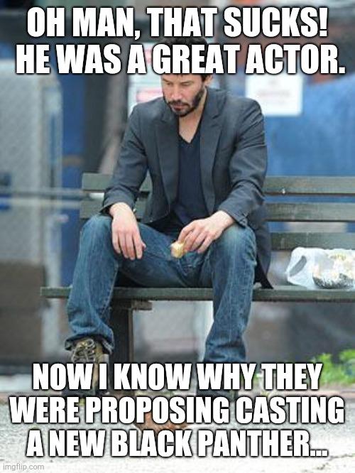 Sad Keanu | OH MAN, THAT SUCKS!  HE WAS A GREAT ACTOR. NOW I KNOW WHY THEY WERE PROPOSING CASTING A NEW BLACK PANTHER... | image tagged in sad keanu | made w/ Imgflip meme maker