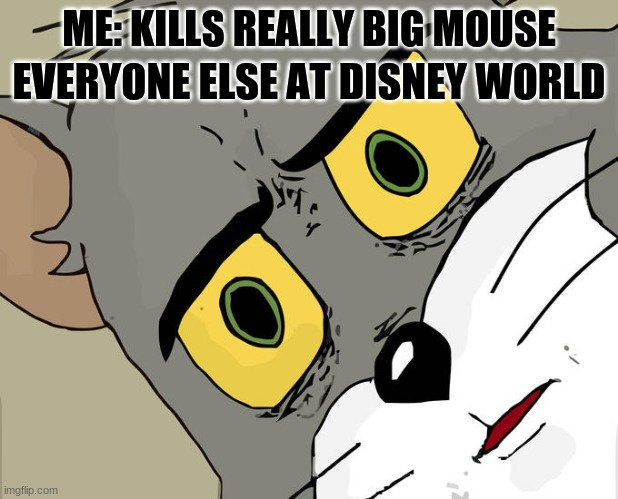 Unsettled Tom Meme |  ME: KILLS REALLY BIG MOUSE; EVERYONE ELSE AT DISNEY WORLD | image tagged in memes,unsettled tom | made w/ Imgflip meme maker