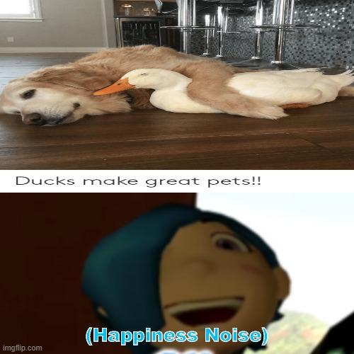 Wholesome Ducc and Puppo |  (Happiness Noise) | image tagged in doggo,duck,smg4 | made w/ Imgflip meme maker