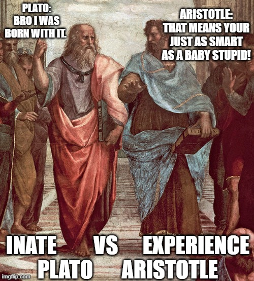 Plato Aristotle and Psychology |  ARISTOTLE: THAT MEANS YOUR JUST AS SMART AS A BABY STUPID! PLATO: BRO I WAS BORN WITH IT. INATE         VS      EXPERIENCE PLATO       ARISTOTLE | image tagged in psychology | made w/ Imgflip meme maker