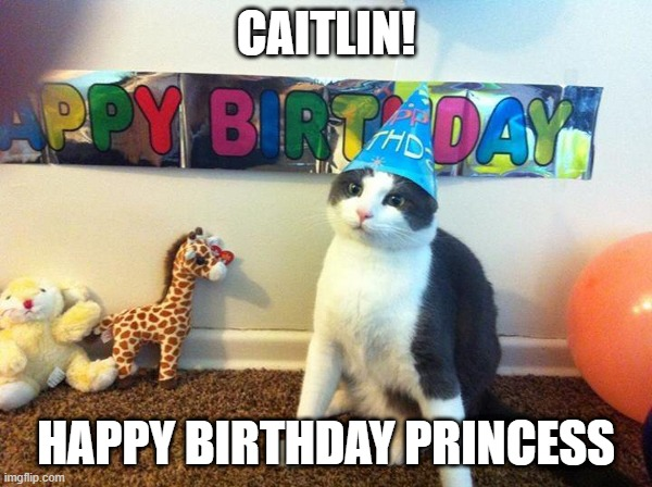 Happy Birthday Now Foryour Spanking Happy Birthday Cat Meme Funny Happy Birthday Meme Birthday Meme On Me Me