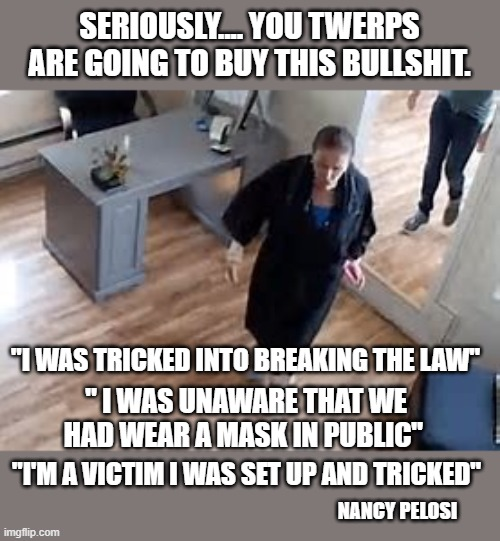 "poor little nancy |  SERIOUSLY.... YOU TWERPS ARE GOING TO BUY THIS BULLSHIT. ""I WAS TRICKED INTO BREAKING THE LAW""; "" I WAS UNAWARE THAT WE HAD WEAR A MASK IN PUBLIC""; ""I'M A VICTIM I WAS SET UP AND TRICKED""; NANCY PELOSI 