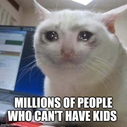 Crying cat | MILLIONS OF PEOPLE WHO CAN'T HAVE KIDS | image tagged in crying cat | made w/ Imgflip meme maker
