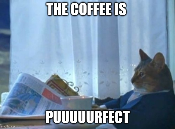 I Should Buy A Boat Cat |  THE COFFEE IS; PUUUUURFECT | image tagged in memes,i should buy a boat cat | made w/ Imgflip meme maker