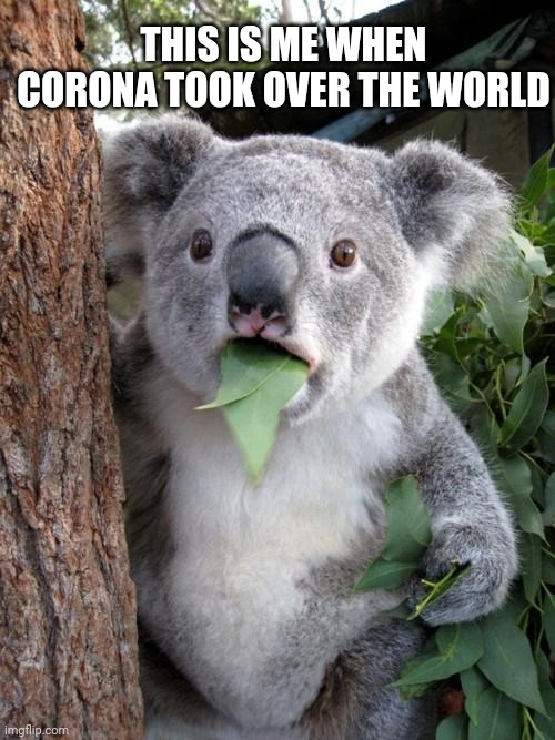 Surprised Koala |  THIS IS ME WHEN CORONA TOOK OVER THE WORLD | image tagged in memes,surprised koala | made w/ Imgflip meme maker