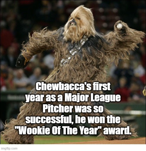 "Wookie of the Year |  Chewbacca's first year as a Major League Pitcher was so successful, he won the ""Wookie Of The Year"" award. 