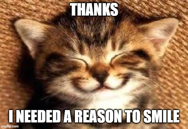 Smiley Cat | THANKS I NEEDED A REASON TO SMILE | image tagged in smiley cat | made w/ Imgflip meme maker