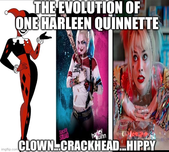 The evolution of Harley Quinn |  THE EVOLUTION OF ONE HARLEEN QUINNETTE; CLOWN...CRACKHEAD...HIPPY | image tagged in harley quinn,evolution,dc,villains,crackhead,suicide squad | made w/ Imgflip meme maker