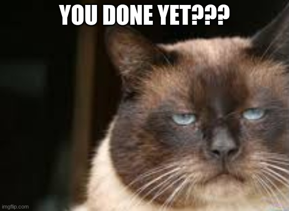 Image tagged in done,im done,grumpy cat not amused - Imgflip