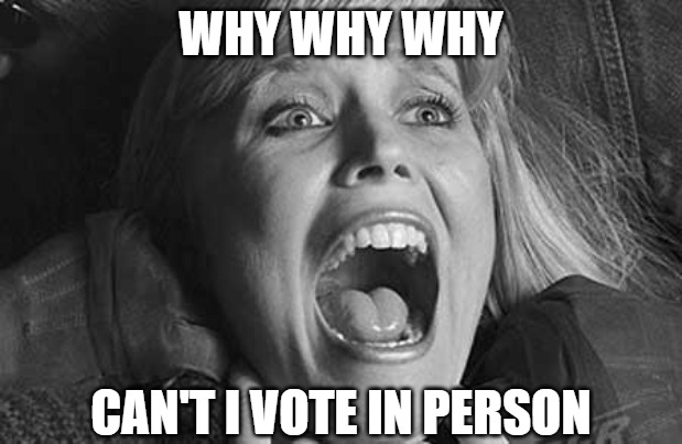 I just want to get out of the house |  WHY WHY WHY; CAN'T I VOTE IN PERSON | image tagged in memes,fun,funny,2020,vote,scream | made w/ Imgflip meme maker