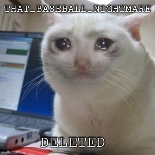 :'( I'm so sad |  THAT_BASEBALL_NIGHTMARE; DELETED | image tagged in crying cat | made w/ Imgflip meme maker