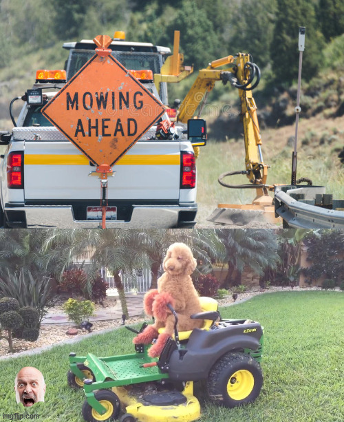 Mowing Ahead | image tagged in memes,trump lawn mower,bad pun dog,rod serling imagine if you will,funny road signs,i see what you did there | made w/ Imgflip meme maker