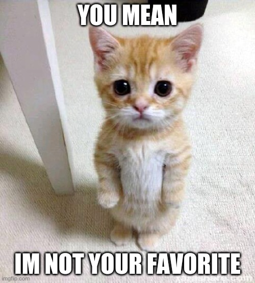 Cute Cat |  YOU MEAN; IM NOT YOUR FAVORITE | image tagged in memes,cute cat | made w/ Imgflip meme maker