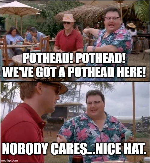 Me when my friends visit from a state that hasn't legalized recreational yet |  POTHEAD! POTHEAD! WE'VE GOT A POTHEAD HERE! NOBODY CARES...NICE HAT. | image tagged in memes,see nobody cares | made w/ Imgflip meme maker