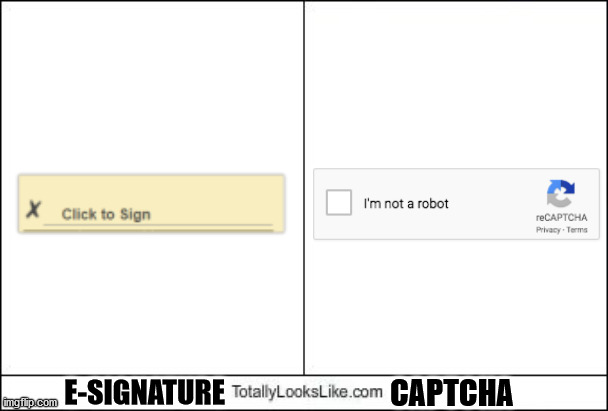 Totally Looks Like |  CAPTCHA; E-SIGNATURE | image tagged in totally looks like | made w/ Imgflip meme maker