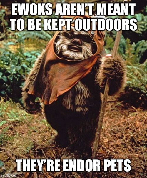 A punny meme |  EWOKS AREN'T MEANT TO BE KEPT OUTDOORS; THEY'RE ENDOR PETS | image tagged in ewok,outdoors,indoors,pun,endor,meme | made w/ Imgflip meme maker