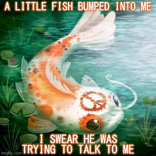 Coy Koi |  A LITTLE FISH BUMPED INTO ME; I SWEAR HE WAS TRYING TO TALK TO ME | image tagged in koi,catfish,peace sign,alternative rock,pixies,song lyrics | made w/ Imgflip meme maker
