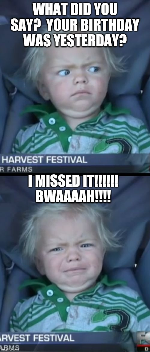 Baby Cry |  WHAT DID YOU SAY?  YOUR BIRTHDAY WAS YESTERDAY? I MISSED IT!!!!!! BWAAAAH!!!! | image tagged in memes,baby cry | made w/ Imgflip meme maker