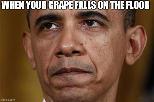 Grapes... |  WHEN YOUR GRAPE FALLS ON THE FLOOR | image tagged in obama,grapes,life struggels | made w/ Imgflip meme maker