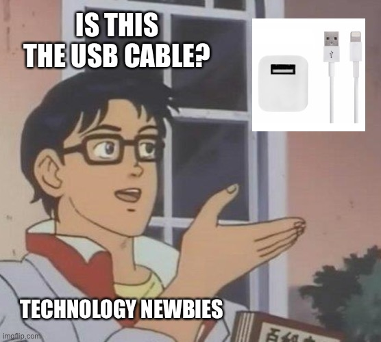 :/ |  IS THIS THE USB CABLE? TECHNOLOGY NEWBIES | image tagged in memes,is this a pigeon,technology,noob | made w/ Imgflip meme maker