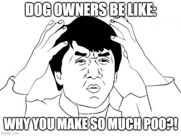 Jackie Chan WTF Meme |  DOG OWNERS BE LIKE:; WHY YOU MAKE SO MUCH POO?! | image tagged in memes,jackie chan wtf | made w/ Imgflip meme maker