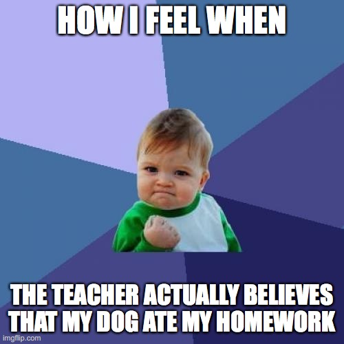 Success Kid Meme |  HOW I FEEL WHEN; THE TEACHER ACTUALLY BELIEVES THAT MY DOG ATE MY HOMEWORK | image tagged in memes,success kid | made w/ Imgflip meme maker