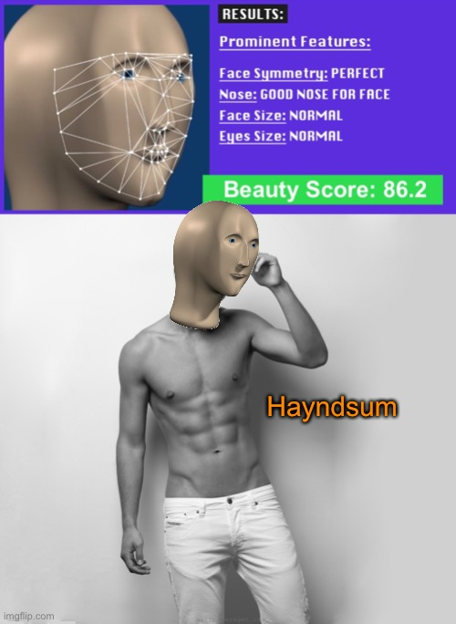 I put a picture of meme man in one of those beauty analysis websites, and I don't regret it a single bit |  Hayndsum | image tagged in funny memes,memes,meme man,hot,handsome,man | made w/ Imgflip meme maker