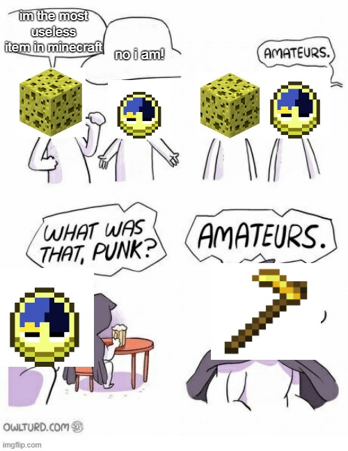 Amatuers Meme |  no i am! im the most useless item in minecraft | image tagged in amatuers meme | made w/ Imgflip meme maker