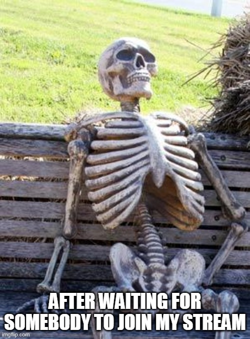Stream |  AFTER WAITING FOR SOMEBODY TO JOIN MY STREAM | image tagged in memes,waiting skeleton | made w/ Imgflip meme maker
