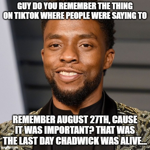 Im still sad, but saw he dies on teh 28th and I remebered that I saw an article on it. |  GUY DO YOU REMEMBER THE THING ON TIKTOK WHERE PEOPLE WERE SAYING TO; REMEMBER AUGUST 27TH, CAUSE IT WAS IMPORTANT? THAT WAS THE LAST DAY CHADWICK WAS ALIVE... | image tagged in rip | made w/ Imgflip meme maker