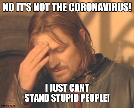 Frustrated Boromir |  NO IT'S NOT THE CORONAVIRUS! I JUST CANT STAND STUPID PEOPLE! | image tagged in memes,frustrated boromir | made w/ Imgflip meme maker