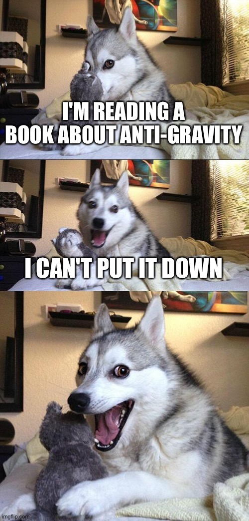 Bad Pun Dog Meme |  I'M READING A BOOK ABOUT ANTI-GRAVITY; I CAN'T PUT IT DOWN | image tagged in memes,bad pun dog | made w/ Imgflip meme maker