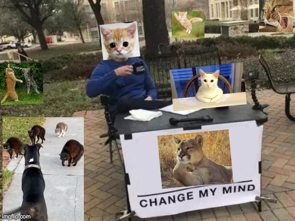 Roar (Change my Mind) | image tagged in memes,change my mind,roar,rawr,cats,morecats | made w/ Imgflip meme maker
