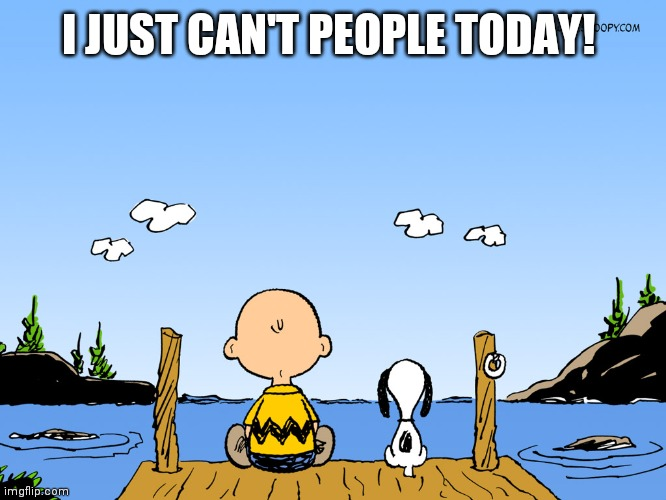 Charlie brown  |  I JUST CAN'T PEOPLE TODAY! | image tagged in charlie brown | made w/ Imgflip meme maker