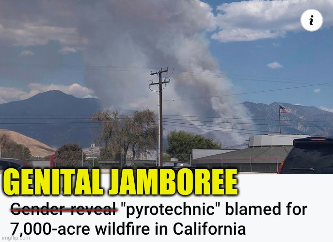 The Real Cause of Wildfires |  GENITAL JAMBOREE; ___________ | image tagged in funny,wildfires,california,gender,party | made w/ Imgflip meme maker