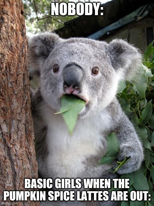 Surprised Koala Meme |  NOBODY:; BASIC GIRLS WHEN THE PUMPKIN SPICE LATTES ARE OUT: | image tagged in memes,surprised koala | made w/ Imgflip meme maker