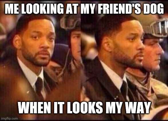 will Smith |  ME LOOKING AT MY FRIEND'S DOG; WHEN IT LOOKS MY WAY | image tagged in will smith | made w/ Imgflip meme maker