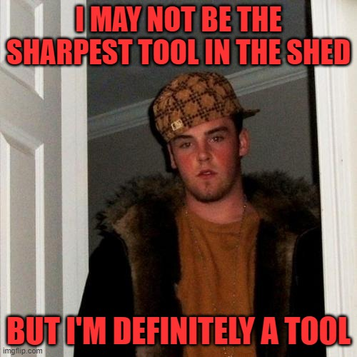 Yes you are, Scumbag Steve |  I MAY NOT BE THE SHARPEST TOOL IN THE SHED; BUT I'M DEFINITELY A TOOL | image tagged in memes,scumbag steve | made w/ Imgflip meme maker