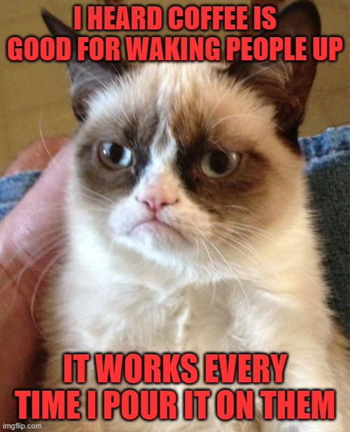 Why u do dis, grumpee |  I HEARD COFFEE IS GOOD FOR WAKING PEOPLE UP; IT WORKS EVERY TIME I POUR IT ON THEM | image tagged in memes,grumpy cat | made w/ Imgflip meme maker