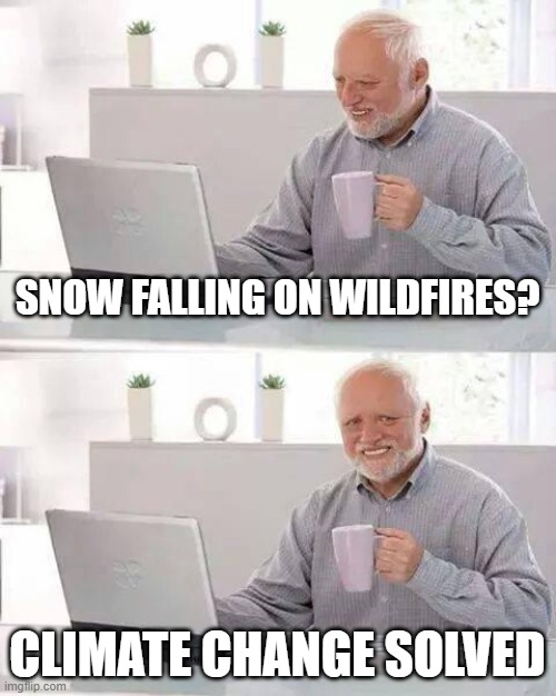 I really hate 2020 |  SNOW FALLING ON WILDFIRES? CLIMATE CHANGE SOLVED | image tagged in memes,hide the pain harold | made w/ Imgflip meme maker