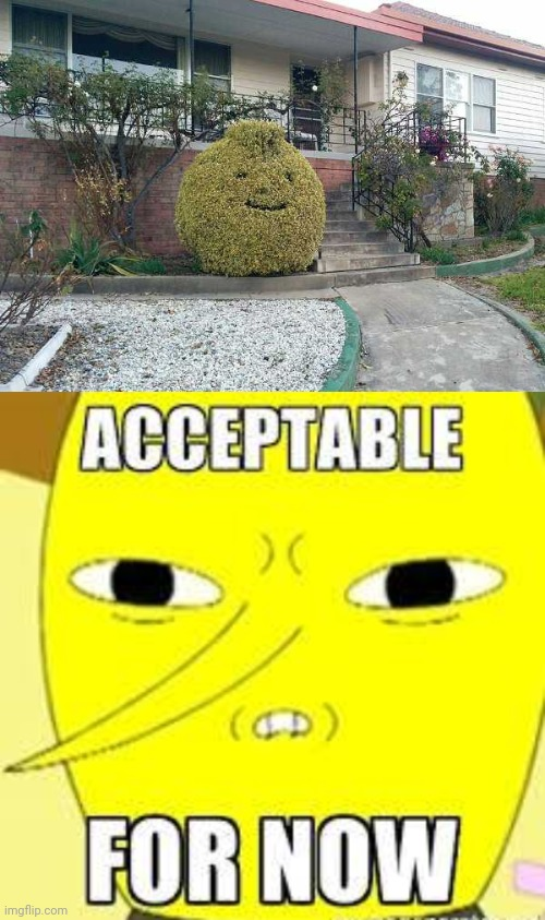 THEY FORGOT THE NOSE | image tagged in lemongrab,adventure time,lemons | made w/ Imgflip meme maker