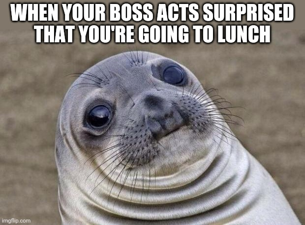 Awkward Moment Sealion |  WHEN YOUR BOSS ACTS SURPRISED THAT YOU'RE GOING TO LUNCH | image tagged in memes,awkward moment sealion | made w/ Imgflip meme maker