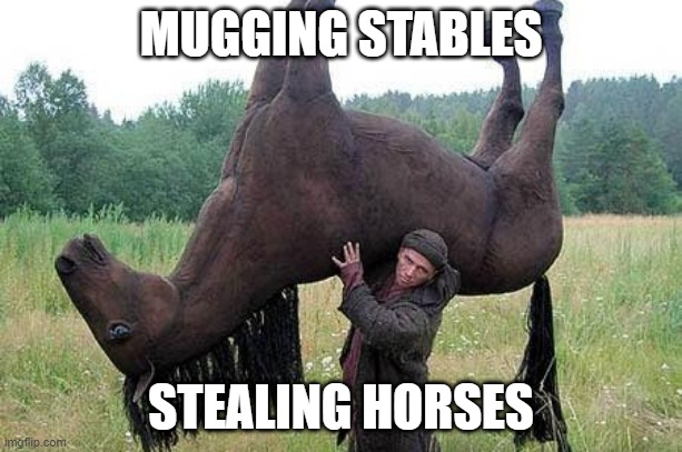 When someones says mugging instead of mucking |  MUGGING STABLES; STEALING HORSES | image tagged in horse | made w/ Imgflip meme maker